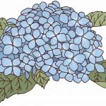 保護中: 青い花