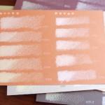 保護中: パラダイス*第72回 ベリーペールの色サンプル